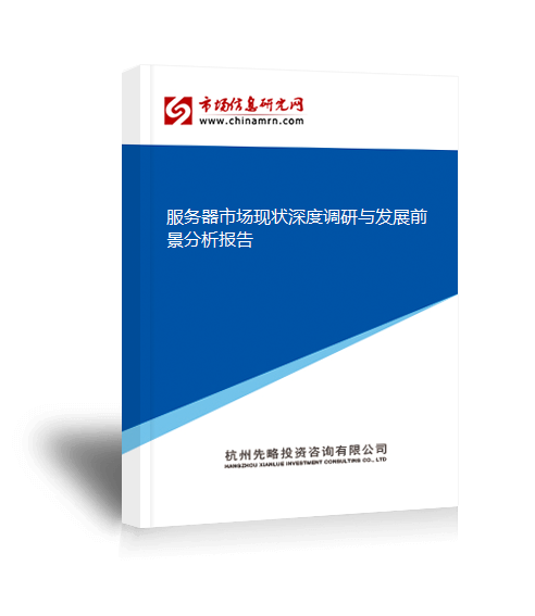 服务器市场现状深度调研与发展前景分析报告